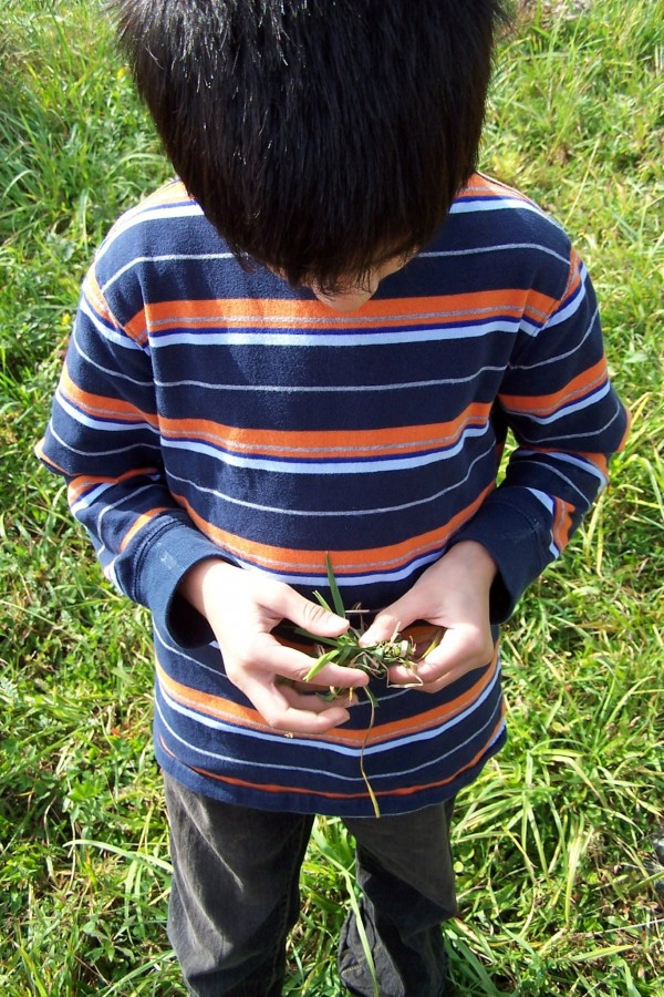 Give kids the opportunity to make discoveries in nature while on a scavenger hunt.  Photo by Susan Caplan McCarthy